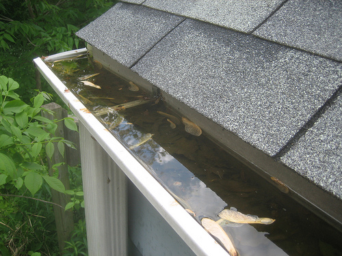 Gutter cleaning gutter cleaning tips gutter cleaning and gutter maintenance are an important part of home ownership your gutters are the collection system on the edge of your roof solutioingenieria Image collections